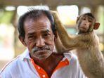 seekor-monyet-menyetuh-rambut-wan-ibrahim-wan-mat_20180404_173901.jpg