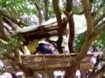 seorang-warga-berada-di-hunian-yang-terletak-di-atas-pohon.jpg