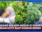 VIDEO Viral Sepasang Kekasih Mesum di Kebun Teh, Terekam CCTV Saat Ciuman Mesra thumbnail