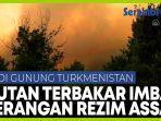 serangan-rezim-assad-sebabkan-kebakaran-hutan-di-gunung-turkmenistan-suriah.jpg