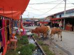 ternak-berkeliaran-di-pasar-kutapajang-gayo-lues-2021.jpg