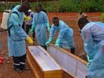 the-ebola.jpg