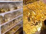 tumpukan-emas-ditemukan-di-rak-di-rumah-zhang-qi.jpg