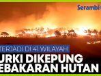 turki-dilanda-kebakaran-hutan-di-41-wilayah-berbeda.jpg