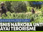 turki-luncurkan-operasi-anti-narkotika-terorisme-25-juta-batang-ganja-dimusnahkan.jpg