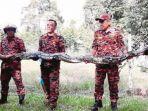 ular-piton-diamankan-oleh-petugas-setelah-menyerang-seekor-anjing-di-malaysia.jpg