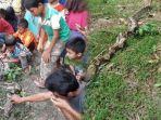 ular-sepanjang-6-meter-di-dalam-lubang-pohon-karet_20181006_105308.jpg