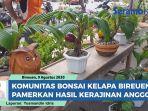 unik-dan-cantik-ini-dia-hasil-kerajinan-komunitas-bonsai-kelapa-bireuen.jpg
