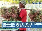 video-bawang-merah-pidie-kuasai-pasar-di-aceh-mampu-saingi-bawang-impor-dari-china.jpg