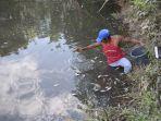warga-mengumpulkan-ikan-yang-mati-di-sungai-alue-geutah.jpg