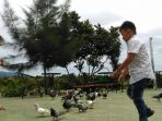 wisata-burung-dara_20180507_220524.jpg
