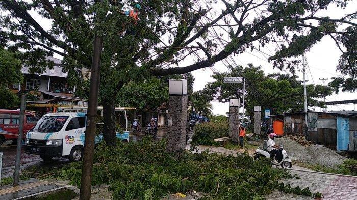 AMBON: Proses penebangan ranting phon di sepanjang Jalan Jenderal Sudirman, Sirimau, Kota Ambon oleh petugas PLN, Selasa (13/7/2021).