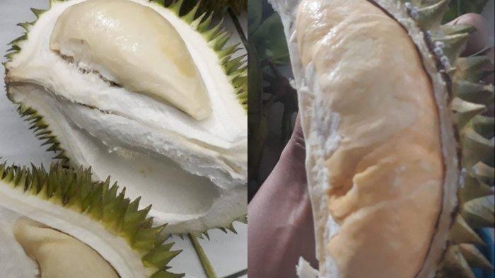 Tampak daging buah durian