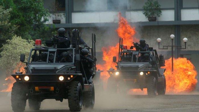 Ramai Isu Denjaka Mendarat di Papua Tumpas KKB, Ini Kata Marinir dan TNI AL