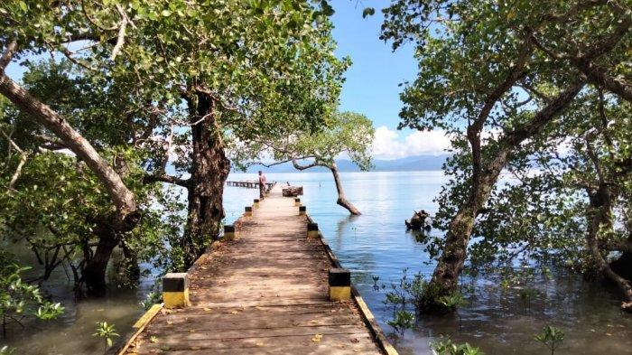 MALUKU: Jembatan kayu berukuran dua meter dengan panjang sekitar 100 meter itu dikelilingi hutan mangrove di sepanjang Teluk Namano, Kecamatan Amahai, Kabupaten Maluku Tengah.