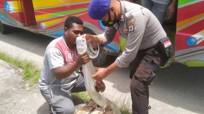 Aparat Musnahkan 50 Liter Sopi di Pelabuhan Tulehu – Maluku Tengah, Pemilik Miras Diamankan
