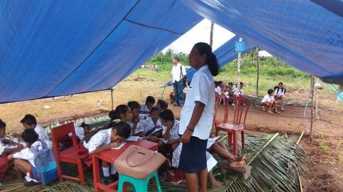 Nekat Demi Ilmu Pengetahuan, Kisah Haru Anak-anak SD Korban Gempa Ambon Belajar