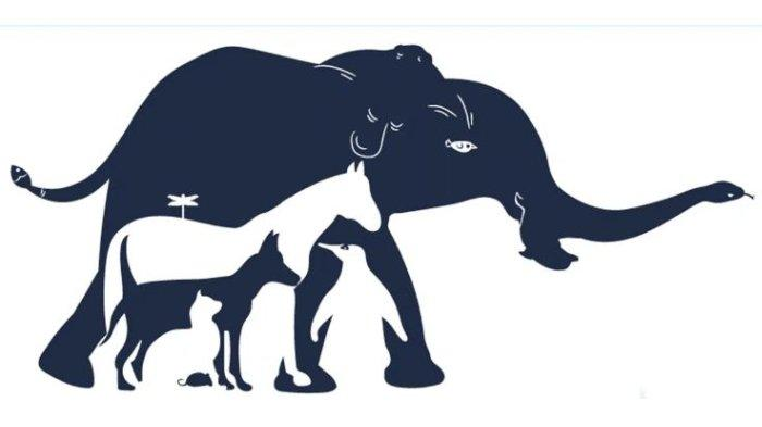 Ada Berapa Banyak Binatang yang Kamu Lihat di Gambar Ini? Hasilnya Tunjukkan Tingkat Kecerdasanmu!