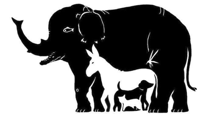 Adu Kecermatan! Ada Berapa Binatang dalam Gambar Ini? Jawabanmu Tunjukkan Kepribadianmu!