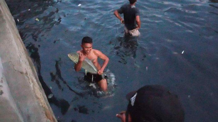 Penjelasan Fenomena Ikan di Sungai Batu Merah, Pernah Terjadi di Banjarmasin dan Bukan Tanda Bencana