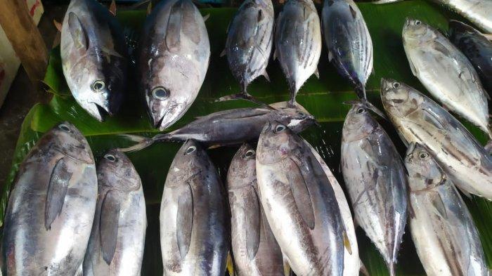 Tangkapan Nelayan Meningkat, Harga Ikan di Pasar Mardika Ambon Mulai Turun