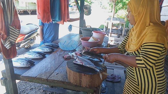 Harga Ikan Tuna di Namlea-Pulau Buru Mahal, Mulai Dari Rp 30-70 Ribu
