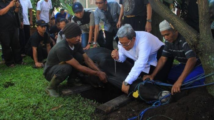 SE Menag Nomor 17 Tahun 2021: Berikut Aturan Pelaksanaan Idul Adha di Wilayah Cakupan PPKM Mandiri