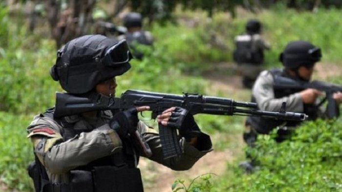 Nekat Kabur dan Menyerang Aparat, Tiga Anggota KKB Tewas Diterjang Peluru TNI-Polri