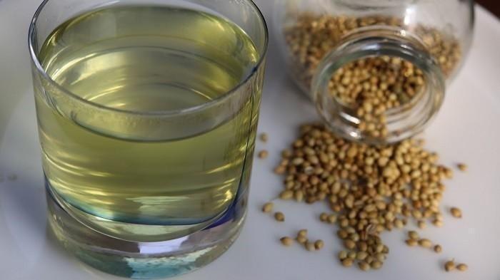 5 Manfaat Mengonsumsi Air Rendaman Ketumbar Bagi Kesehatan, Simak Ulasannya