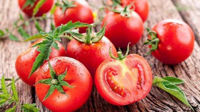 Ilustrasi tomat