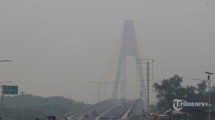 Jokowi Minta Menteri, Panglima TNI hingga Kapolri Selesaikan Kebakaran Hutan dan Lahan di Riau