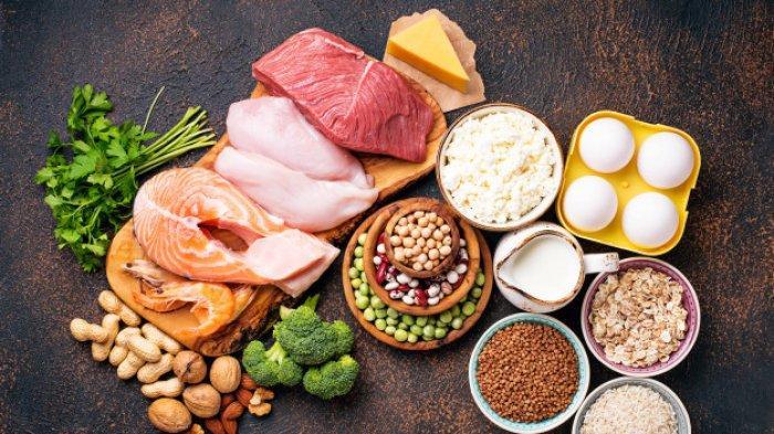 Ilustrasi makanan yang kaya protein