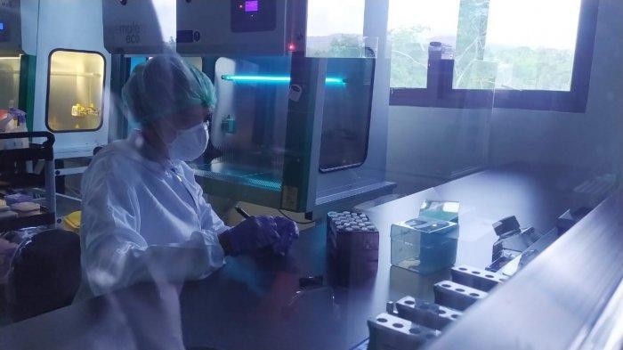2930 Sampel Telah Diuji di BTKL Ambon Untuk Deteksi Covid-19, Target 100 Sampel Per Hari
