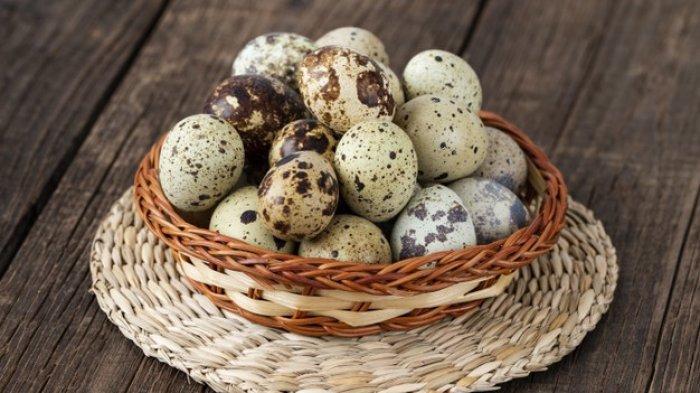 8 Manfaat Telur Puyuh untuk Kesehatan, Meningkatkan Kekebalan Tubuh hingga Baik untuk Penglihatan