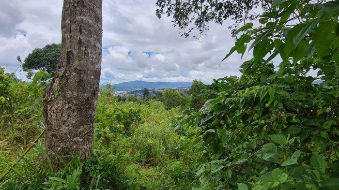 Kuti Kata Maluku; Awas Jang Salah Mawe