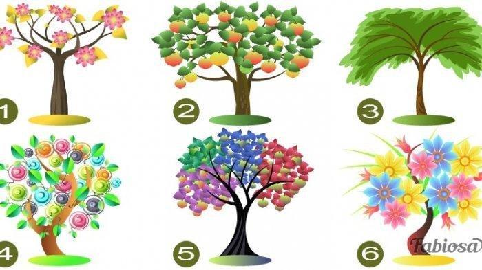 Tes Kepribadian: Pohon yang Kamu Pilih Tunjukkan Kepribadianmu