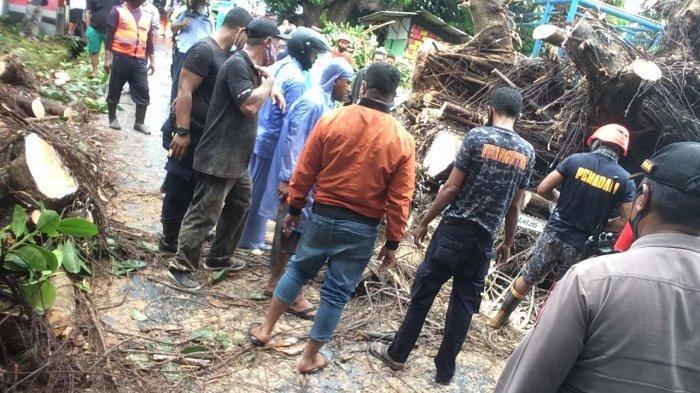 Angin Kencang, Pohon Tumbang di Salobar Timpa Rumah Warga dan Kabel Listrik PLN