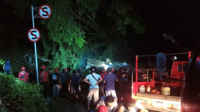 Lampu Padam, 4 Tiang Listrik Rusak Akibat Pohon Tumbang di Depan RST Ambon