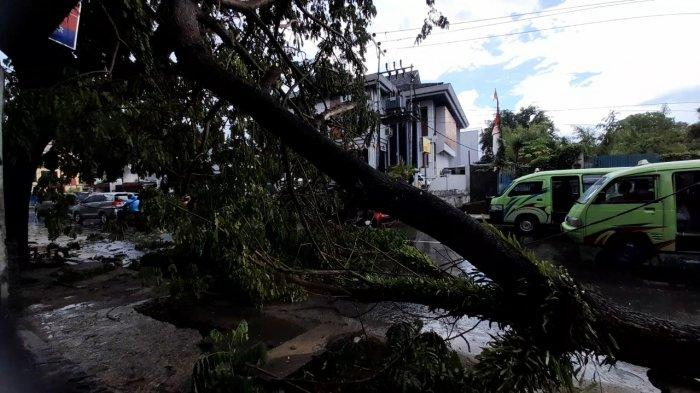 Pohon tumbang akibat angin kencang dan hujan deras di Jalan Tulukabessy, Rijali, Sirimau, Kota Ambon, Senin (8/2/2021).