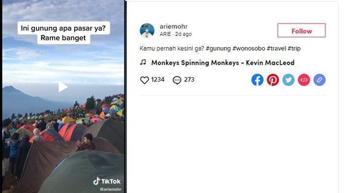 VIRAL Video Situasi Gunung Prau Ramai Pendaki Tanpa Protokol Kesehatan, Pengunggah Akui Video Lama