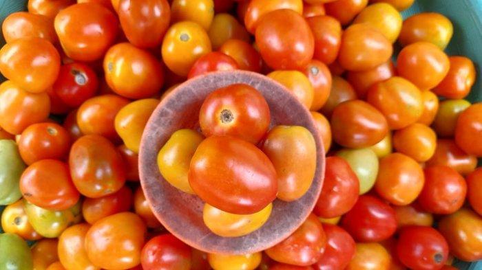 Seminggu Pasca Lebaran, Harga Tomat dan Cabai Rawit di Pasar Mardika Anjlok