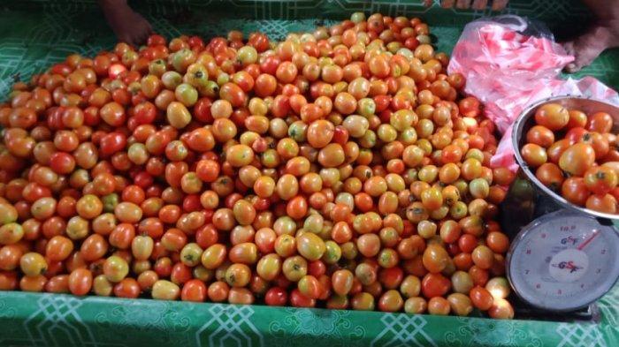 Sudah Satu Minggu, Harga Tomat di Pasar Tradisional Namlea Kembali Normal