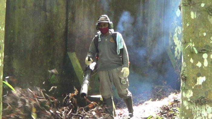 Tiga Kali Lipat UMP Maluku, Gaji Tukang Kebun Taman Australia Setara Gaji Jabatan Manajer