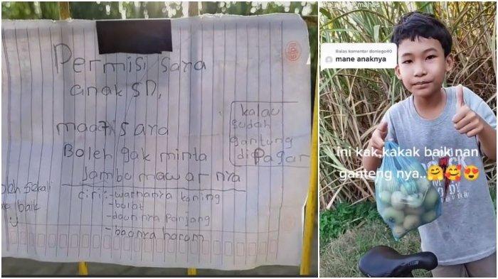 Viral Bocah SD Tulis Surat Mohon Izin untuk Minta Jambu, Pemilik Kagum dengan Kesopanannya