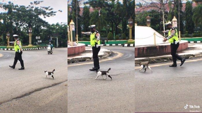 Viral Polisi Bantu Kucing Menyeberang Jalan Banjir Pujian Netizen: Senang Dapat Banyak Doa Baik