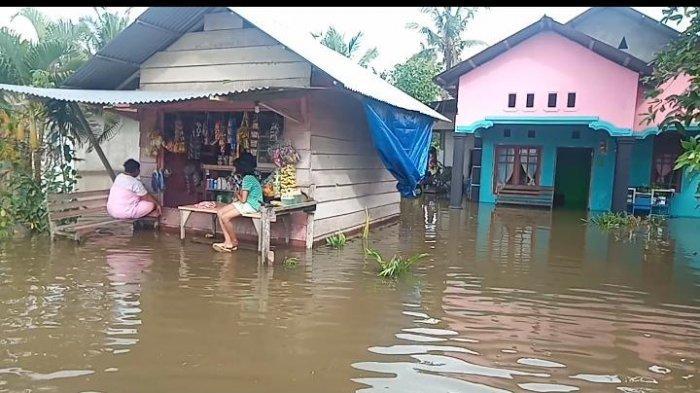Sawah Terendam Banjir, Petani di Desa Air Mendidih - Kabupaten Buru Butuh Bantuan
