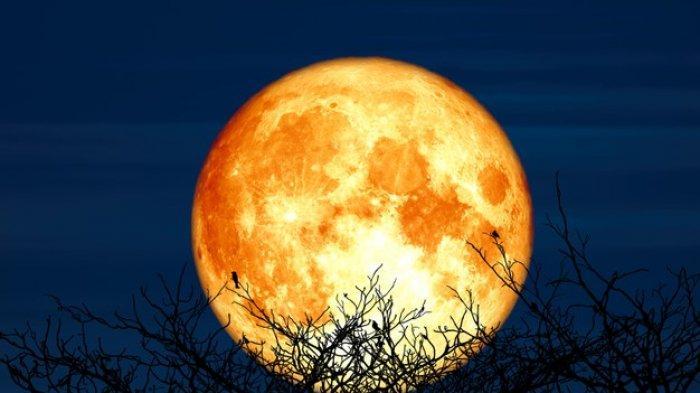 Daftar Wilayah yang Bisa Menyaksikan Gerhana Bulan Total, Maluku kecuali Kep. Aru Pukul 18.44.37 WIT