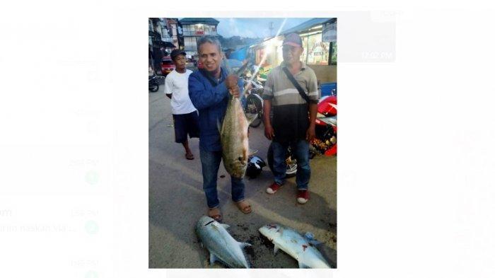 Alumni Jurusan Kelautan, Yusuf Wally Sebut Fenomena Ikan Muncul di Batu Merah Bukan Pertanda Bencana