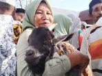 gendong-kambing-hewan-kurban-idul-adha-dalam-tradisi-hadrat-di-desa-sepa-maluku-tengah.jpg