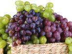 ilustrasi-anggur.jpg